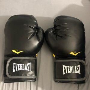 Everlast Classic Boxing Training Gloves